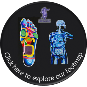 Association of Reflexologists Footmap icon